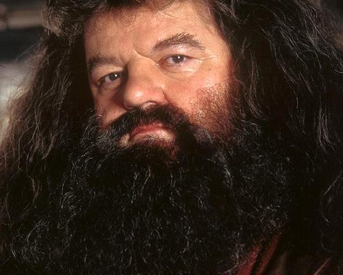 hagrids-beard