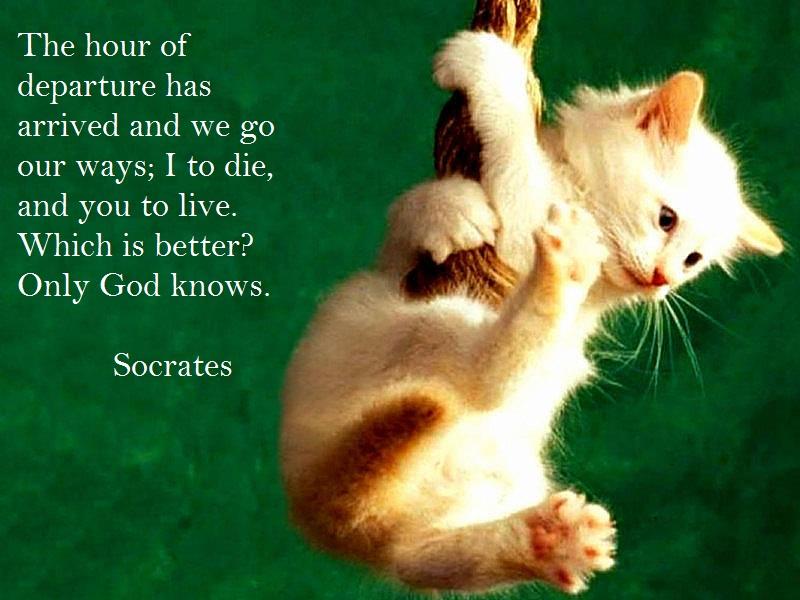 Motivational Socrates