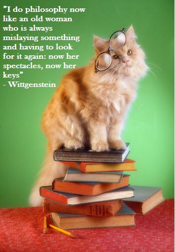 Motivational Wittgenstein 3