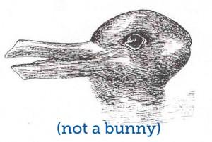 Duck-Rabbit not bunny