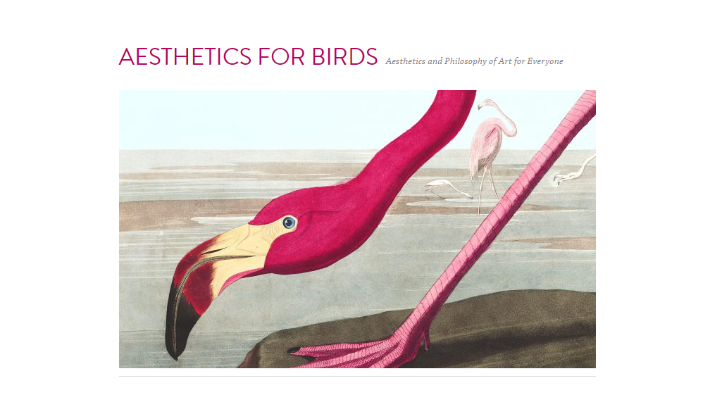 aesthetics for birds design