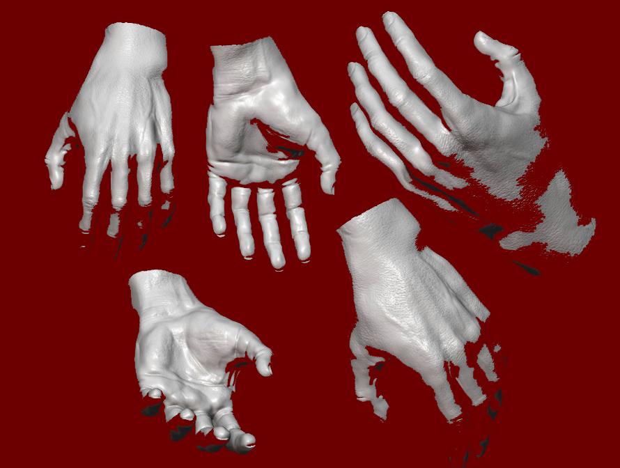 hand-studies
