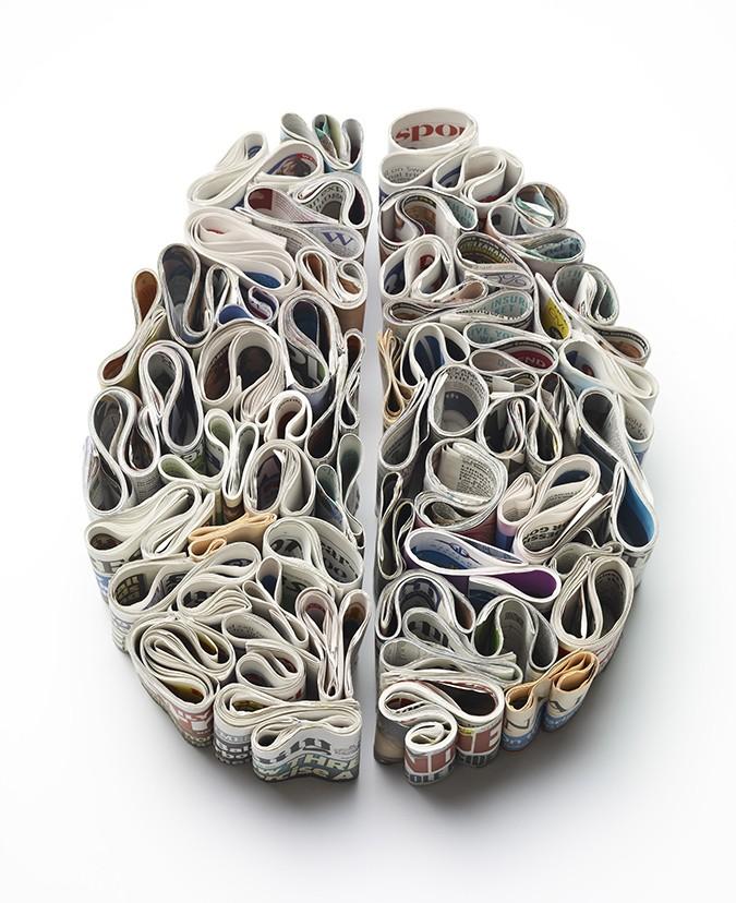 paper-brain